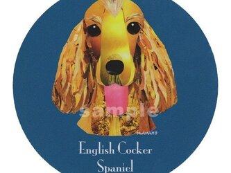 イングリッシュ コッカー スパニエル《犬種名ステッカー/小型犬》の画像