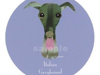 イタリアン グレーハウンド《犬種名ステッカー/小型犬》の画像
