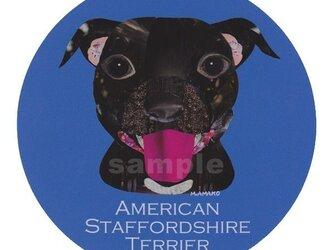 アメリカンスタッフォードシャーブルテリア《犬ステッカー/中型犬》の画像