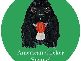 アメリカン コッカー スパニエル/黒《犬種名ステッカー/小型犬》の画像