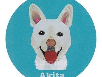 秋田犬《犬種名ステッカー/大型犬》の画像