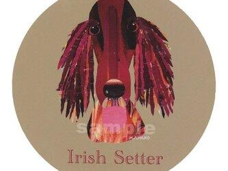 アイリッシュ セター《犬種名ステッカー/大型犬》の画像