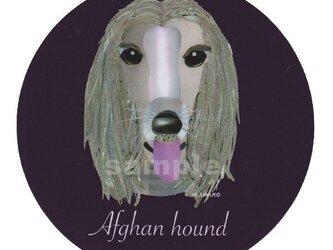 アフガン ハウンド《犬種名ステッカー/大型犬》の画像