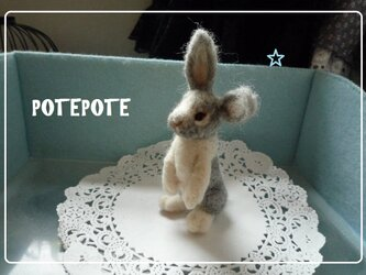 【POTEPOTE】立ちウサギ。の画像