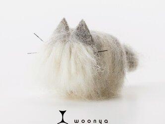 woonya【persian】の画像