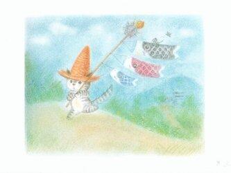 麦藁帽子をかぶった猫 鯉のぼりの画像