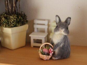 花摘み☆手乗り羊毛うさぎサン☆ネザーの画像
