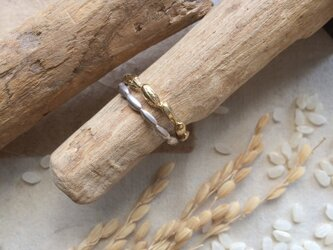 *穀物シリーズ*米粒ピンキーリングの画像