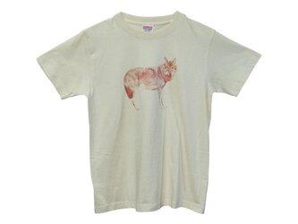 6.2oz Tシャツ naturals S オオカミの画像