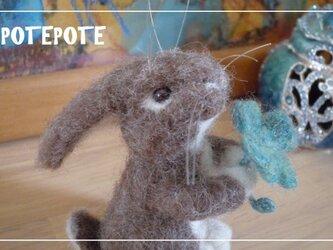 【POTEPOTE】立ちウサギ☆四葉をあげるの画像