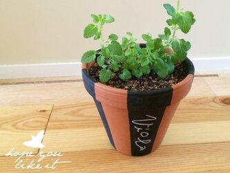 黒板ペイント植木鉢_design2の画像