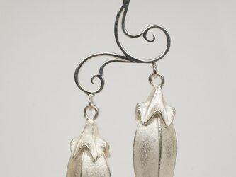 campanula pendantの画像