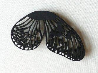バタフライ黒の画像