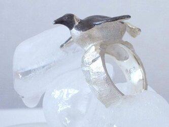 キングペンギンのリングの画像