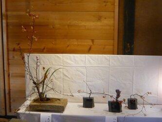 生け花用 花器4号の画像