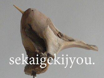 bird 〜 流木の小鳥・aaの画像