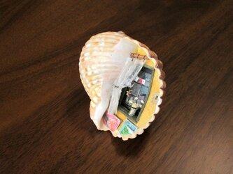 貝がら ミニチュア 窓辺の画像