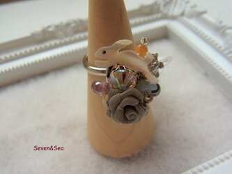 シェルウサギちゃんと薔薇のリングの画像
