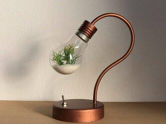 bulb terrarium miniの画像
