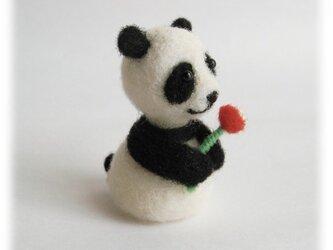 ありがとう「パンダ」の画像