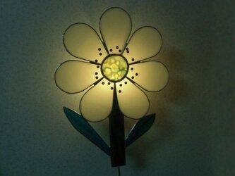 お花のライトの画像