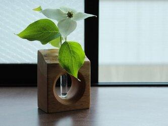 Frower Cube (フラワーキューブ)の画像