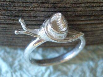 カタツムリのリング 【受注制作】の画像