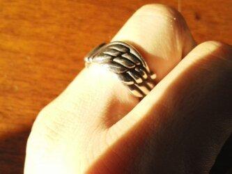 Wing Ringの画像
