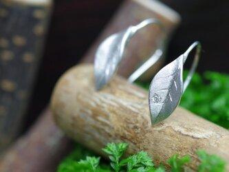 leaf pierced earringsの画像