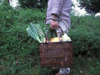 竹買い物かご68の画像
