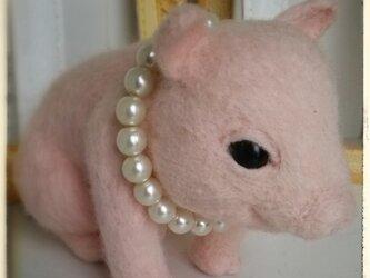 羊毛♪ぶたちゃんに真珠の画像