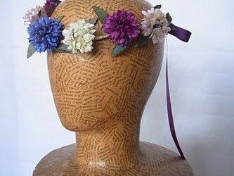 矢車草の花冠の画像