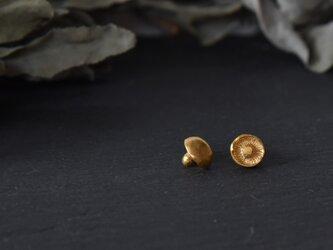 シイタケゴールドカラーピアスの画像