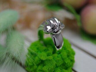 temaneki cat ringの画像