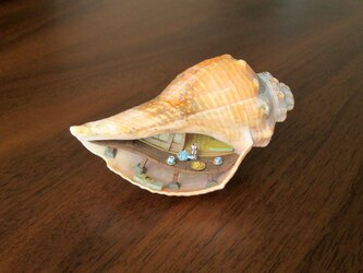[arata*様ご依頼品]貝がら ミニチュア 縁側(再)の画像