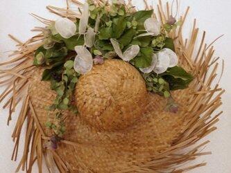 椰子帽子に添えての画像