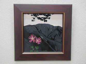 なつかしの山・思い出の花シリーズ「丹沢、檜洞丸・コイワザクラ」の画像
