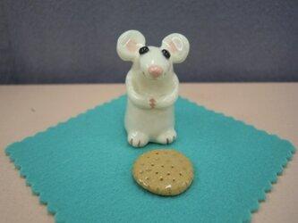 ネズミ&ビスケットの画像