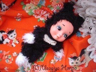迷いのベビー黒猫・珠子(タマコ)ちゃん人形*の画像