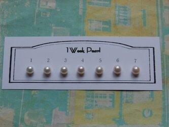 真珠7個セット(7.0ミリサイズ)n.1300-12の画像