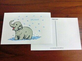 コゾウの水浴び*2枚組の画像