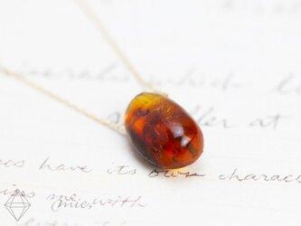 K10◆植物から生まれた石 アンバー ネックレスの画像