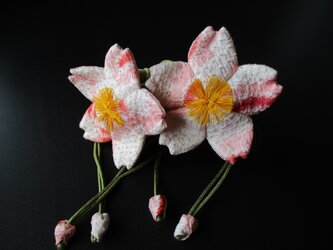 桜の香袋の画像