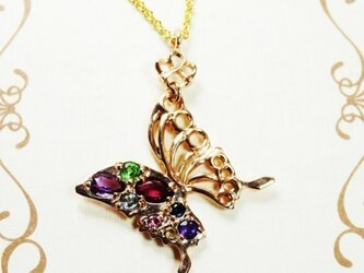 papillon d'orの画像