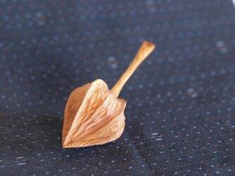 木のほおずき (小)イチイの画像