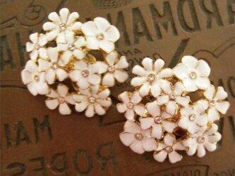 Blanc bouquet ブランブーケの画像