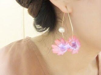 (再)しずく×ピンクサイネリアピアスの画像