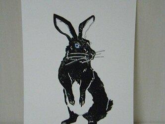 葉書〈Rabbit-1(黒)〉の画像