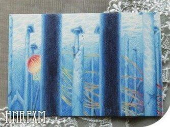 くらげ5種ポストカードセット〜青い海の画像