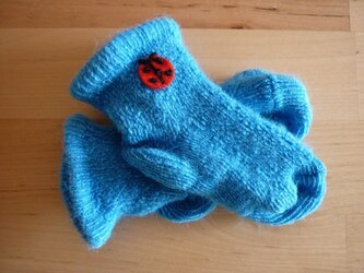 てんとう虫靴下(青)の画像